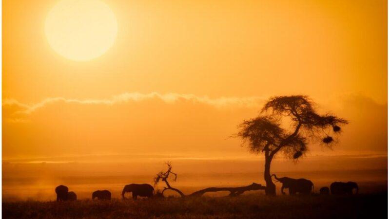Sights in Kenya