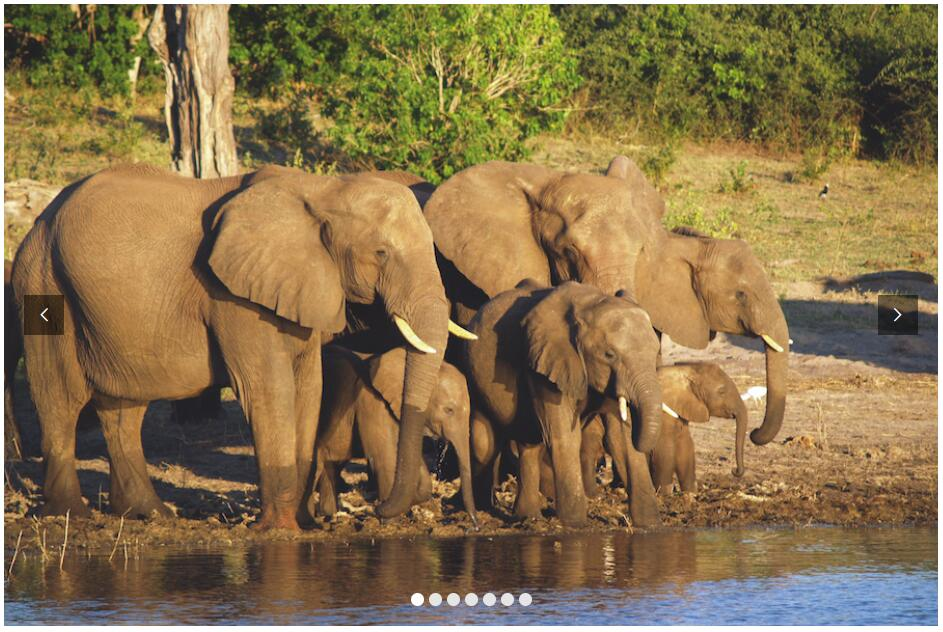 Zambia – Houseboat Safari On The Zambezi